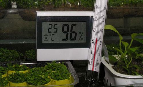 Температура и влажность в теплице