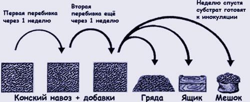 Подготовка компоста для выращивания шампиньонов